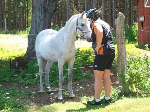 Horse Whisperer!