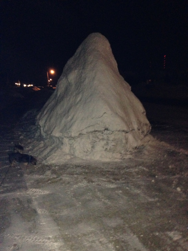 Holy snow pile, Batman.