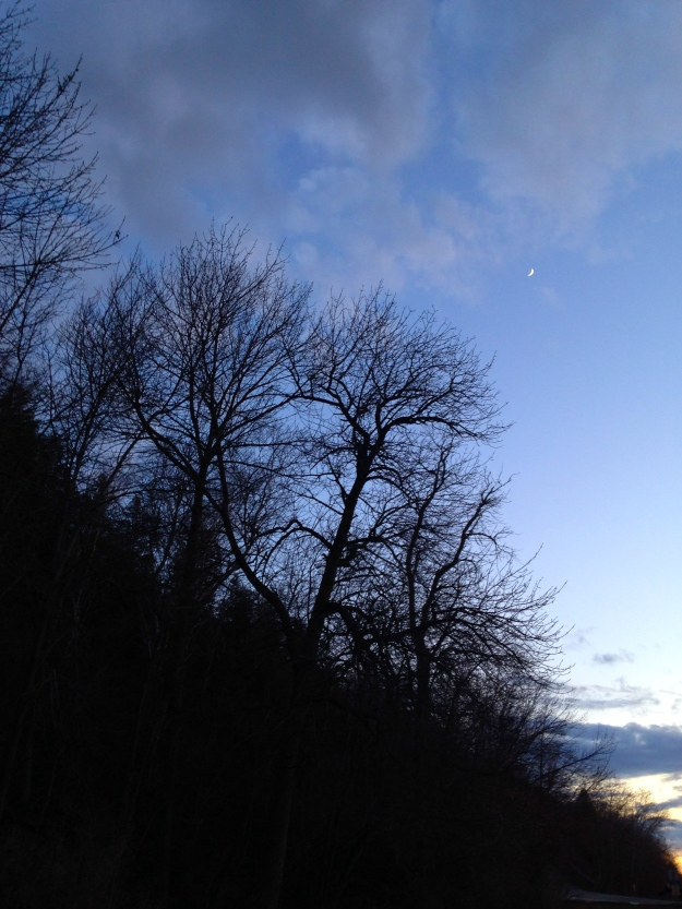 Fingernail Moon over Bayshore