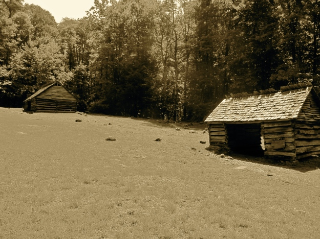 Abandoned settlers buildings along the Roaring Fork Motor Trail in the Smoky Mountains